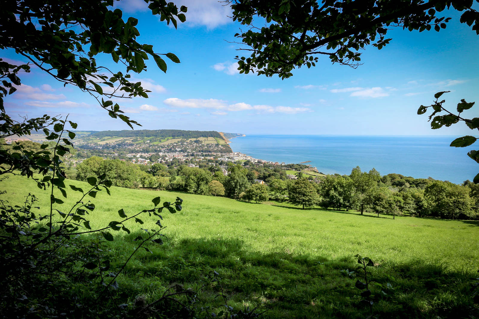 westhill-sidmouth3